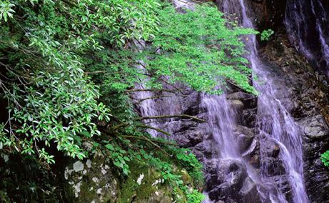 姉妹滝のイメージ写真
