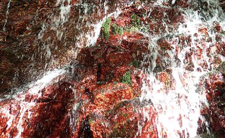 赤滝のイメージ写真
